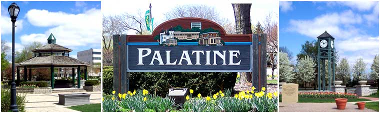 palatine IL home for sale