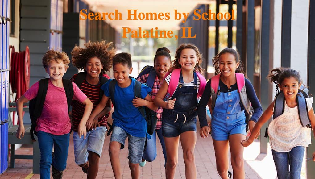searh home by school palatine